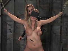 Four luxury coupled with sexy blondies are loving some pain
