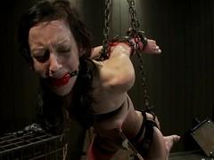 Elise Graves had never tortured that hard
